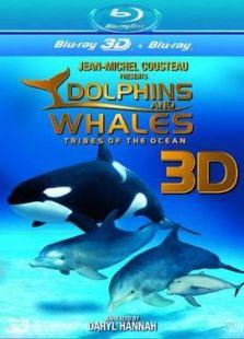 海豚与鲸鱼3D