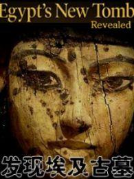 发现埃及古墓