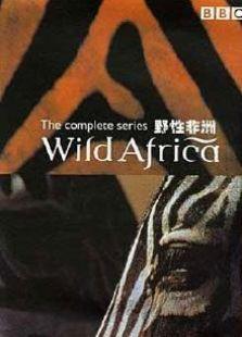 狂野的非洲