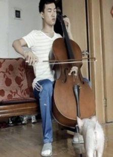 大提琴之恋