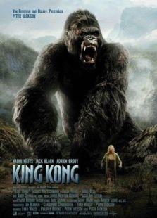 金刚(2005)标题