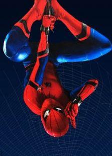 蜘蛛侠:返校季