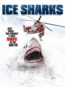 冰川鲨鱼背景图