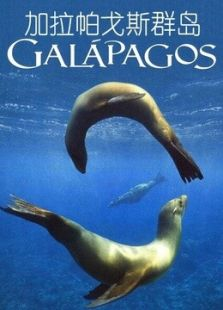 BBC:加拉帕戈斯群岛