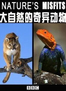 大自然的奇异动物