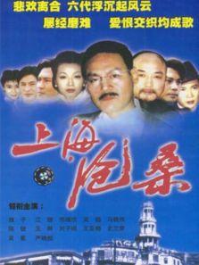 上海沧桑(国产剧)
