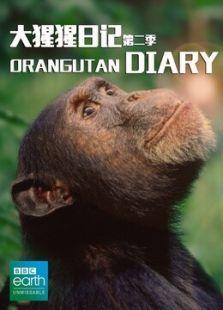 BBC:大猩猩日记第二季