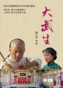 大武生电视剧(国产剧)