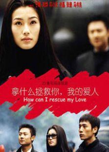 拿什么拯救你我的爱人(2002版)(国产剧)