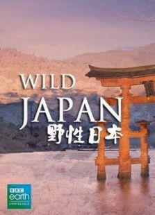 BBC:野性日本