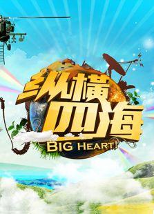 纵横四海 2012(综艺)
