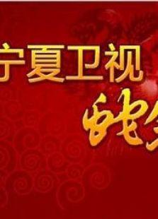 宁夏卫视2013春晚(综艺)