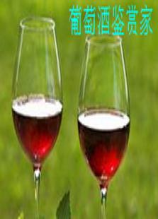 葡萄酒鉴赏家