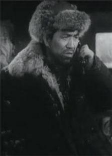 昆仑山上一棵草(1962)