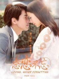 戀戀不忘(2014)